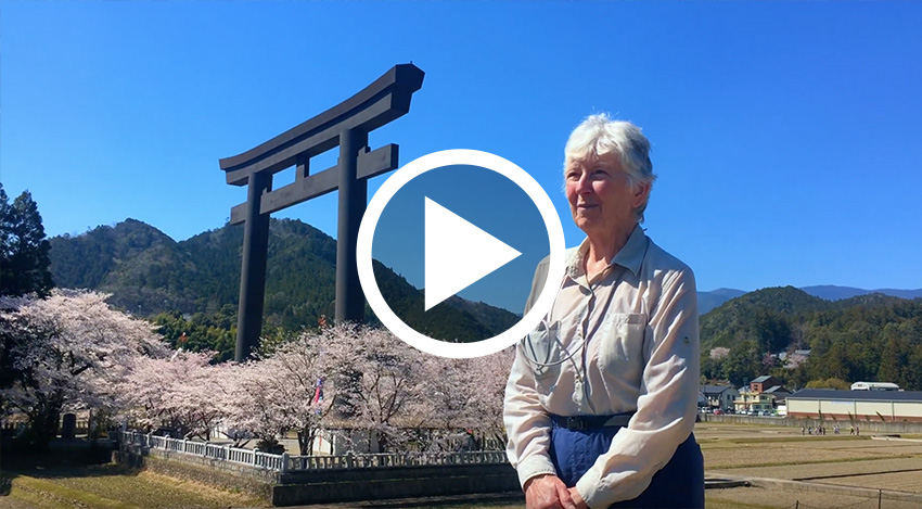 Hiking & Culture Experience in  Japan.